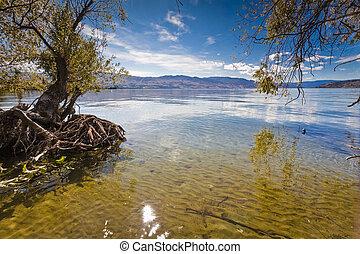 山湖, 夏
