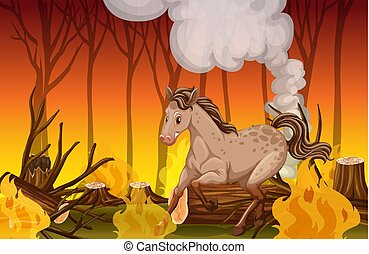 山火事, 馬, 動くこと, 森林