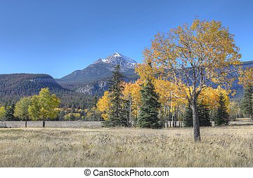 山, アスペン, 岩が多い, 秋