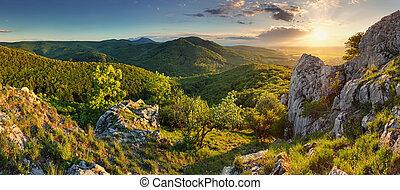 山, -, スロバキア, 森林, パノラマ