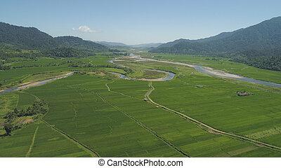 山, フィリピン, 農地, 谷