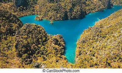 山, フィリピン, palawan., 熱帯 島, 湖, kayangan, coron
