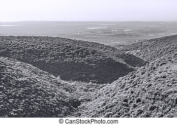 山, 光景, 航空写真, イスラエル, galilee