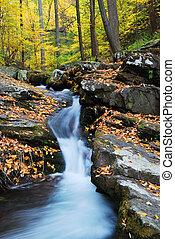 山, 入り江, 木, かえで, 黄色, 秋