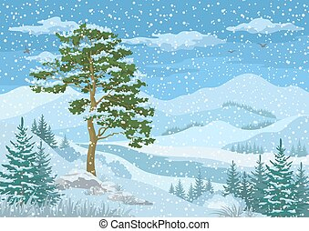 山, 冬の景色