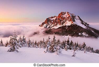 山, -, 冬天風景, 斯洛伐克