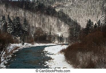 山, 冬, マツ 森林, 背景, 川の景色