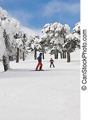 山, 冬, slope., 森林, スキーの白, スポーツ, 景色。