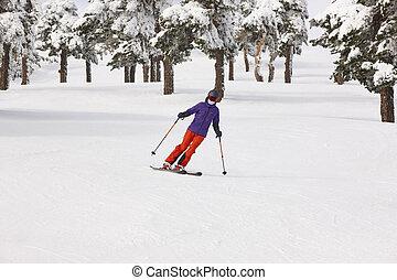 山, 冬, slope., 森林, スキーの白, 景色。