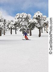 山, 冬, slope., 森林, スキーの白, 風景