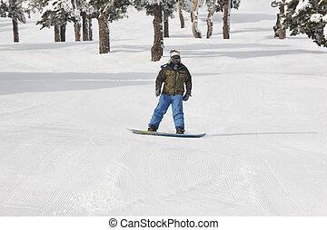 山, 冬, slope., 森林, snowboarding, 白, スキー, 風景