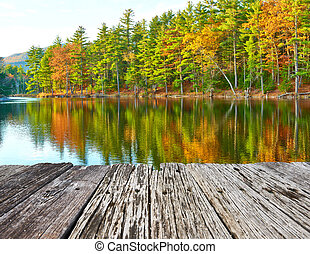 山, 国民, ハンプシャー, 森林, 新しい, 池, 白
