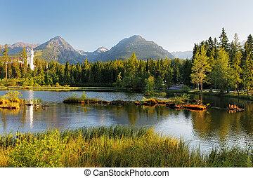 山, 夏天, pleso, -, 斯洛伐克, strbske, 風景