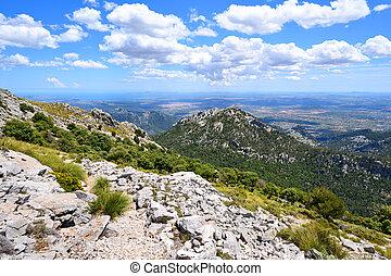 山, 夏, 島, スペイン, mallorca, 風景