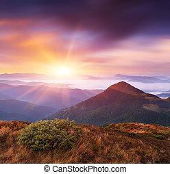 山, 夜明け, 風景