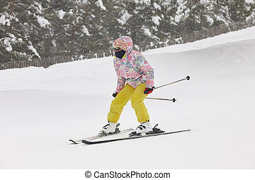 山, 女, slope., 森林, スキーの白, 景色。