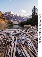 山, 岩が多い, カナダ, 湖, 死んだ, 氷堆石, 木, 風景, 光景