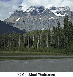 山, 岩が多い