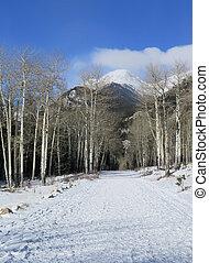 山, 岩が多い, 国立公園, 道, 冬