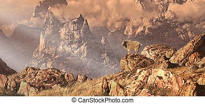 山, 岩が多い, goat