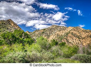 山, 峡谷, 南, towsley, カリフォルニア