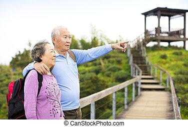 山, 恋人, 公園, シニア, ハイキング
