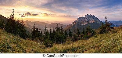 山, 斯洛伐克, 頂峰, rozsutec