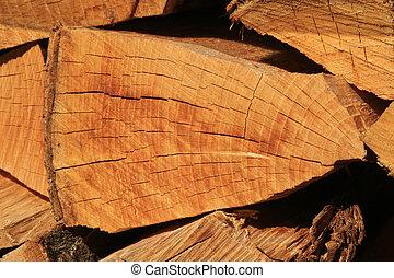 山, 木材を伐採する