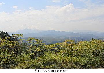 山, 植物, 都市でない, 美しさ, 自然, 平穏, 空, 現場, 木, 環境, 成長, 雲, 光景, 穏やかである, ...