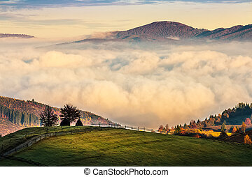 山, 熱, carpathian, 日出, 有霧