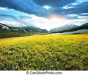 山, 牧草地