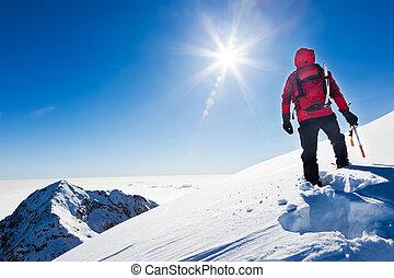 山, 登山家, 冬, 雪が多い, 上, italy., 日当たりが良い, 流域, day., 西部, biella, アルプス