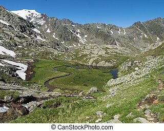 山, 美しい, 雪, 湿地, アル中, 牧草地, 草, 終わらせられた, オーストリア, ハイキング, 夏, peaks., stubai, 光景, 流れ, 呼ばれる, paradies, アルプス, 高山, 春, 上, 緑, チロル, 道