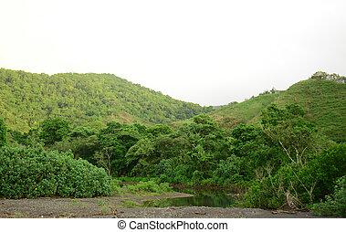 山, 自然, パナマ, トロピカル, rainforest, 川
