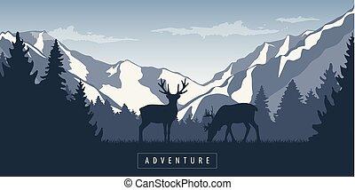 山, 野生動物, 荒野, 麋, 多雪, 冒險, 風景, 森林