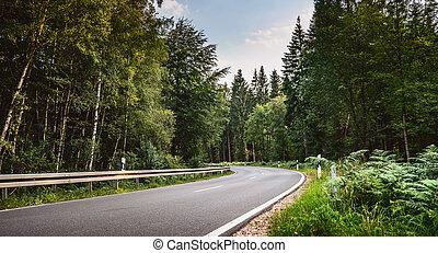 山, 長い間, curvy, 道, 高山, 森林