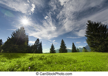 山, 雲, 牧草地, 太陽, 空, 曇り, 木, ビーム, いくつか