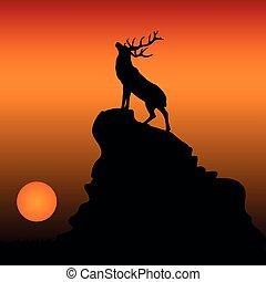 山, 頭, 彼の, 上げられた, 上, 鹿, イラスト, 日没