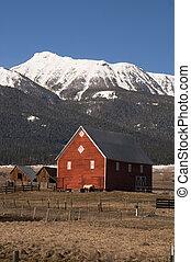 山, 馬, 家畜, 牧場, 壊れなさい, 赤, 傾倒, 風, 納屋