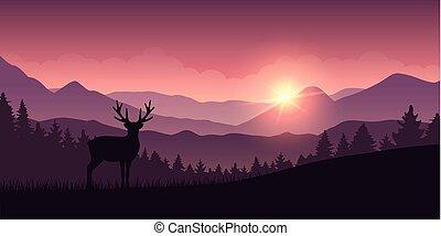 山, 馴鹿, 森林, 風景