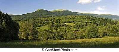 山, bieszczady, 綠色