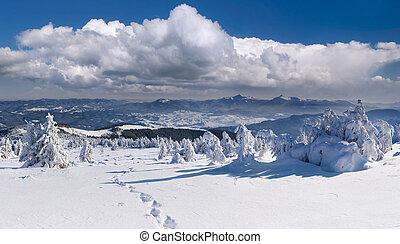 山, carpathian, 冬天風景