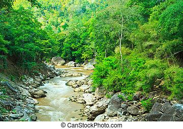 山, luang, 川, ob, タイ, 森林
