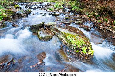 岩が多い, 秋, 流れ