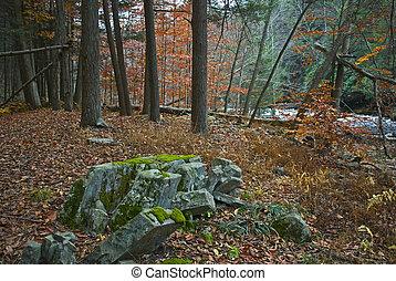 岩石形成, 樹林