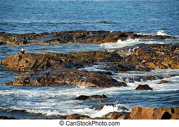 岩, 海洋