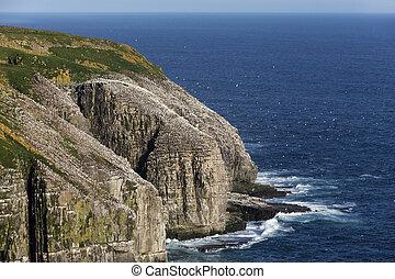 岬, st. 。, ニューファンドランド, メアリーの