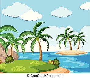 島, ココナッツ, 背景, 現場, 木