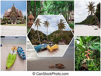島, コラージュ, トロピカル, 花, タイ, 浜