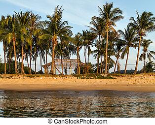 島, 台なし, ジャングル, 海, 家